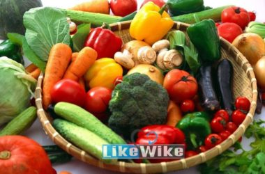 15 Super Healthy Foods on Planet With Benefits